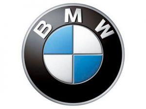 Διαγνωστικό BWM